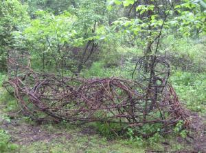 080613_grapevine fence