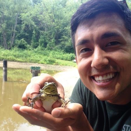 Taiji with bullfrog