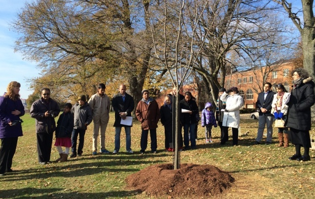 The Giving Tree: CommemorativePlantings
